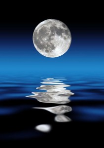moon bathing - 1000 pics / FB